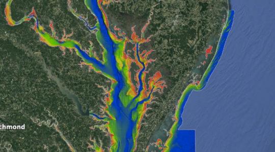 chesapeake-bay-fishing-chart